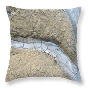 Azzurro 2 Throw Pillow