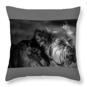 B And W Dog Throw Pillow