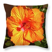 B Glavin Garden 11604 Throw Pillow