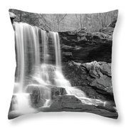 B Reynolds Falls Throw Pillow