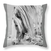 B/w Mustang Throw Pillow