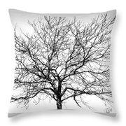 B/w Tree #1 Throw Pillow