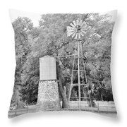 B/w036 Throw Pillow