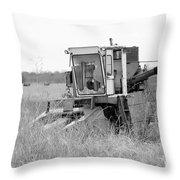 B/w113 Throw Pillow