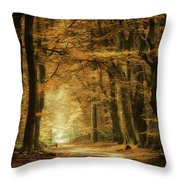 B3 Throw Pillow