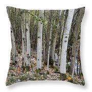 Babbling Brook Throw Pillow
