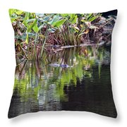 Babcock Wilderness Ranch - Alligator Den Throw Pillow
