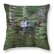 Babcock Wilderness Ranch - Alligator Lake - Heads Up Throw Pillow