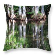 Babcock Wilderness Ranch - Alligator Lake Reflections Throw Pillow