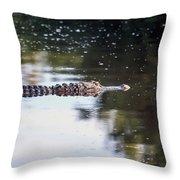 Babcock Wilderness Ranch - Alligator Long Profile Throw Pillow