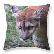 Babcock Wilderness Ranch - Oceola The Panther On The Prowl Throw Pillow