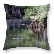 Babcock Wilderness Ranch - Peaceful Alligator Lake Throw Pillow