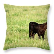 Babe In Dandelions Throw Pillow