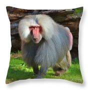 Baboon Stalking Throw Pillow