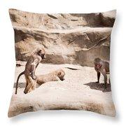 Baboons Monkeys Having Sex Throw Pillow