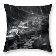 Baby Alligator Vs Mud Wasp Throw Pillow