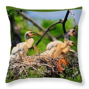 Baby Anhinga Chicks Throw Pillow