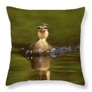 Baby Animal Series - Hunting Duckling Throw Pillow