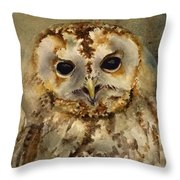 Baby Barred Owl Throw Pillow