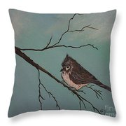 Baby Bird Throw Pillow by Ginny Youngblood