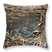 Baby Birds Throw Pillow