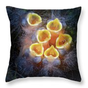 Baby Birds Open Mouths Throw Pillow