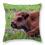 Baby Bison Throw Pillow
