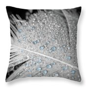 Baby Blue Dew Drops On Feather Throw Pillow