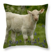 Baby Calf With Bluebonnets Throw Pillow