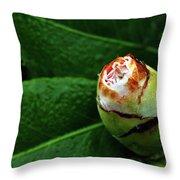 Baby Camellia Throw Pillow