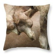Baby Camels Throw Pillow