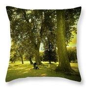 Baby Carriage In A Park Throw Pillow