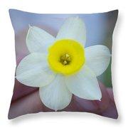 Baby Daffodil Throw Pillow