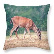 Baby Deer Walking On Grass By Forest Throw Pillow