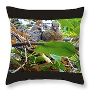 Baby Doves 1 Throw Pillow