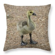 Baby Duck Throw Pillow