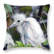 Baby Egret Throw Pillow