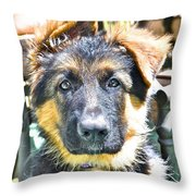 Baby Face Pup Throw Pillow