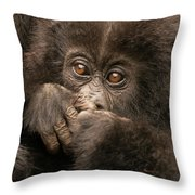 Baby Gorilla Close-up Hiding Mouth With Hands Throw Pillow