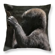 Baby Gorilla3 Throw Pillow