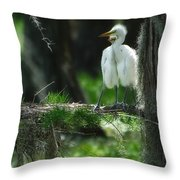 Baby Great Egrets With Nest Throw Pillow