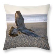 Baby Gull At Dusk Throw Pillow