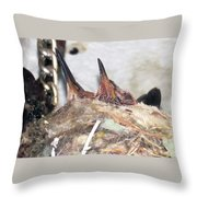 Baby Hummers 6 Throw Pillow