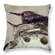 Baby Hummers Throw Pillow