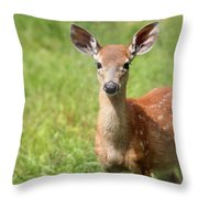 Baby In The Tall Grass Throw Pillow