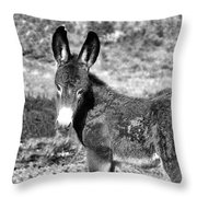 Baby Jenny 2 Throw Pillow