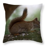 Baby Throw Pillow