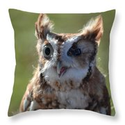 Cute Screetch Owl Throw Pillow