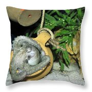 Baby Octopus Throw Pillow