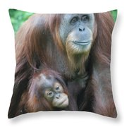 Baby Orangutan Clinging To His Mother Throw Pillow